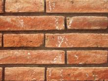 Brick 024