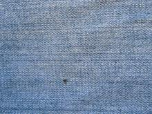 Fabric 015
