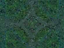 Mosaic 037