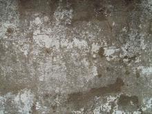 Wall 035