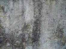Wall 038