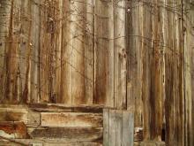 Wood 039