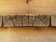 Wood 041