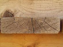 Wood 042