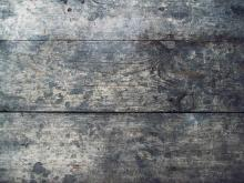 Wood 049
