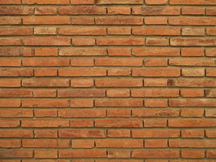 Brick 029