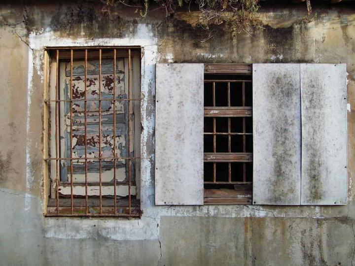 Window 007