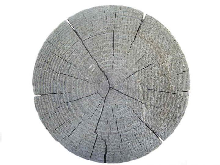 Wood 018