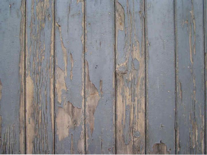 Wood 028